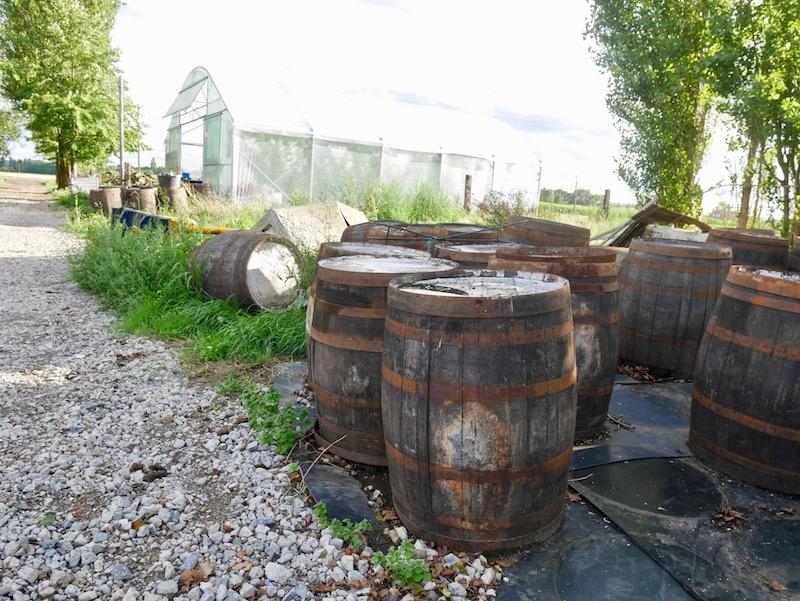 Faesser für Barrel Aged Biere Hof ten Dormaal Regine Marxen HHopcast auf Bierreise